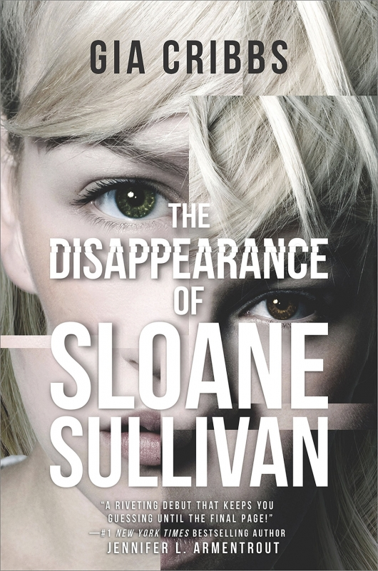 The Disappearance of Sloane Sullivan book cover