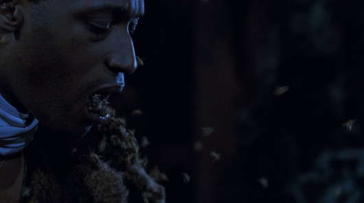 Blu-ray Review: Candyman (Collector's Edition)