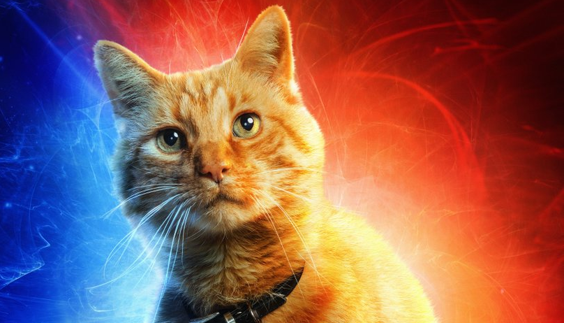 'Captain Marvel' Character Posters: Goose Is The Best ... Jude Law