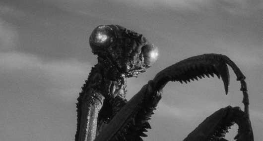 Blu-ray Review: The Deadly Mantis