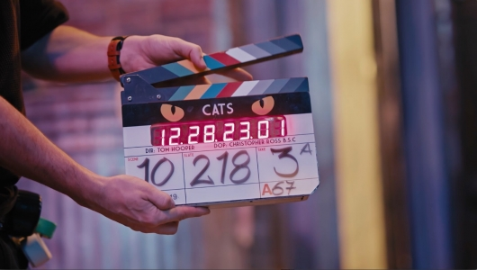 Cats Clapperboard